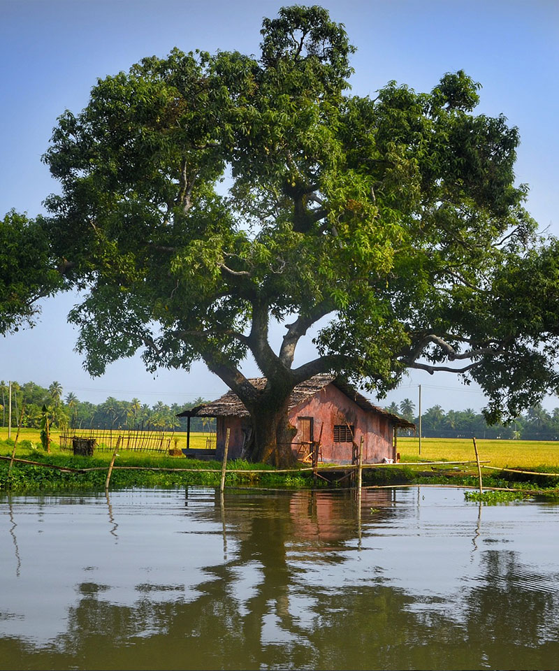 Alleppey-Tour-Packages